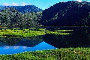nova-zelandia15