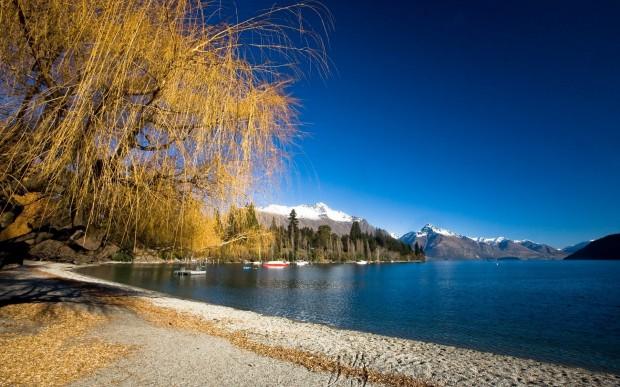 Nova Zelandia(3)