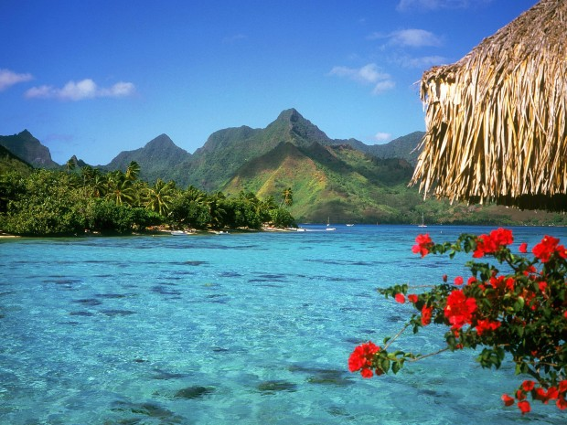 Taiti (5)